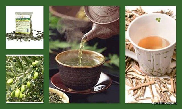 Blog120 - O Chá Que Elimina Barriga, Trata a Pele, o Cabelo e a Saúde!