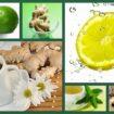 2011 10 14 105x105 - Projeto Verão 2012: Desintoxicação Alimentar