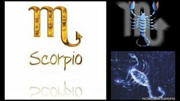 2011 10 25101 364x205 - A Mulher De Escorpião...