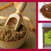 2011 11 024 105x105 - Os Benefícios Do Açúcar  Mascavo
