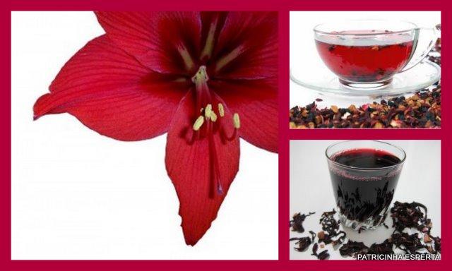 2011 11 081 - Projeto Verão 2012: Chá De Hibiscus Sanavita