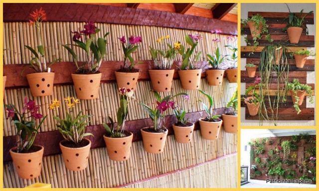 jardim vertical no sol:Em áreas mais abertas e locais mais quentes, as plantas mais