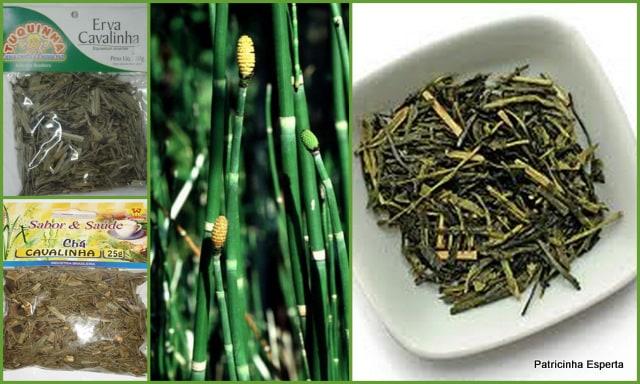 2012 01 17 Chá de Cavalinha: Um Chá de Beleza e Saúde!
