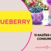 Blueberry 105x105 - Blueberry: 13 Razões pra Consumir