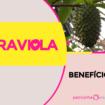 graviola 105x105 - Graviola: Benefícios e Nutrientes