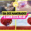 dia dos namorados 105x105 - Dicas do Dia dos Namorados para quem Namora