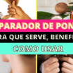 Como Escolher o Shampoo Certo 3 1 105x105 - Reparador De Pontas: Para Que Serve, Benefícios, Como Usar